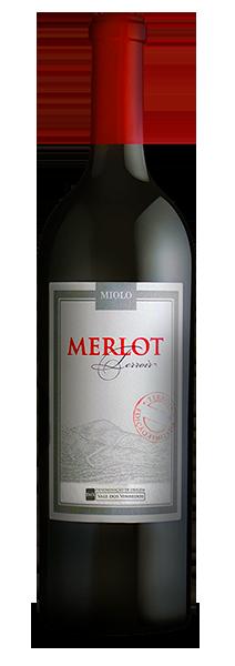 Foto de uma garrafa do Vinho Merlot Terroir